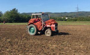Medžlis IZ Prijedor: Podijelili 20 tona krompira socijalno ugroženima