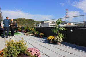 Protiv golog betona: Prva bašta na krovu stambene zgrade u Tuzli
