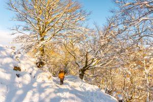 Iza nas je topla i promjenjiva zima Čeka nas slično proljeće